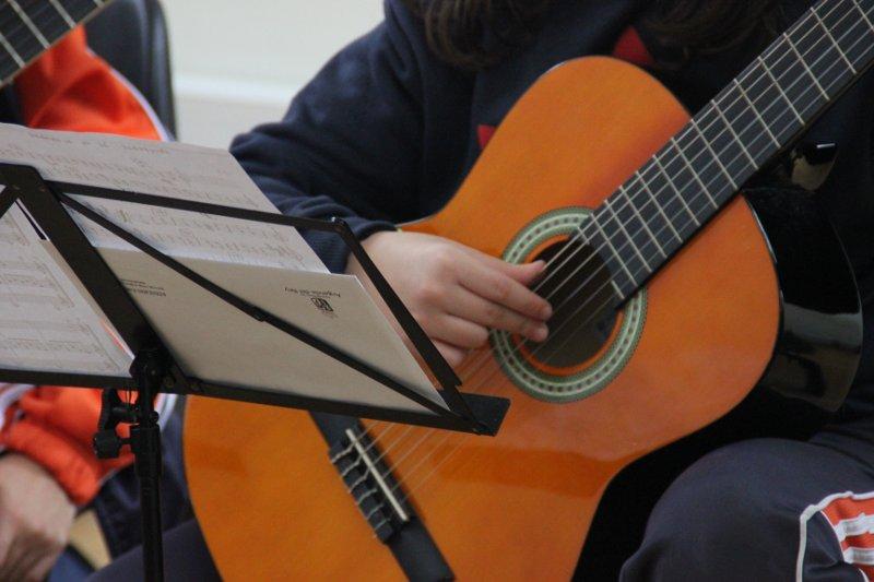 Guitarras española 2013